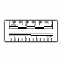 """2"""" Adhesive Photo Evidence Scales"""