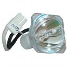 SPEX Forensic Light Source Bulbs